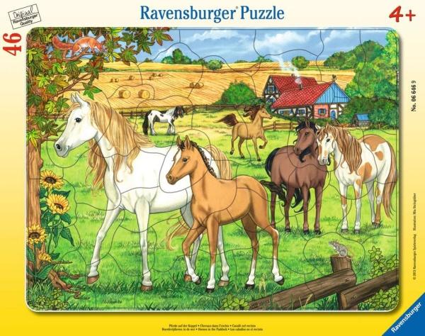 Ravensburger 06646 Pferde auf der Koppel 46 Teile Rahmenpuzzle
