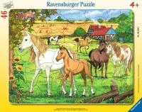 Ravensburger 06646 Pferde auf der Koppel 46 Teile...