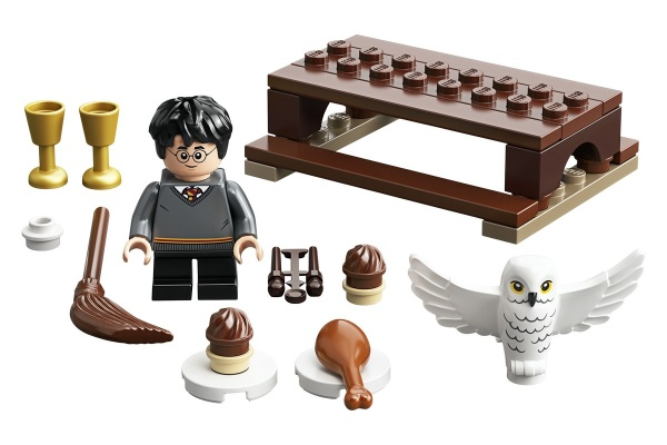 LEGO 30420 Harry Potter und Hedwig Polybag