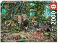 Educa 16013 Dschungel 2000 Teile Puzzle