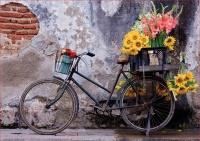 Educa 17988 Fahrrad mit Blumen 500 Teile Puzzle