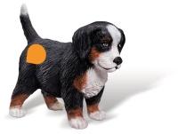 Ravensburger 00374 tiptoi Spielfiguren: Berner Sennenhund...