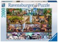Ravensburger 16652 Aimee Steward: Großartige...