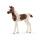 Schleich 13839 Horse Club Araber Pinto Fohlen